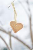 Stree-branche décorée du biscuit en forme de coeur Image libre de droits