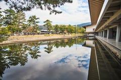 Streemening van Nara met aardige achtergrond Stock Fotografie