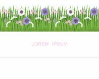 Streep van gras, gras en bloemen Royalty-vrije Stock Afbeelding