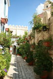 Street. Scene cyclades architecture with plants bougainvillea and flowers Royalty Free Stock Photos