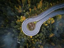 Street from above trough a misty forest at autumn, aerial view flying through the clouds with fog and trees Stock Photos