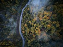 Street from above trough a misty forest at autumn, aerial view flying through the clouds with fog and trees Stock Image