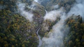 Street from above trough a misty forest at autumn, aerial view flying through the clouds with fog and trees Royalty Free Stock Image