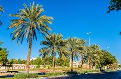Street in Al Ain Stock Photos