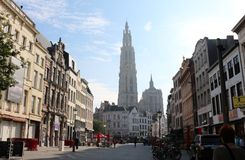 Street in Anwerp, Belgium with view of Cathedral Royalty Free Stock Photo