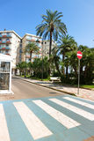 Street with apartments and palmtrees. Zebra crossing street with apartments and palmtrees Royalty Free Stock Photos