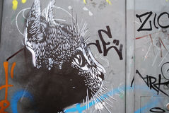 Street art cat Royalty Free Stock Images