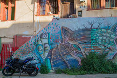 Street, art and cats. VALPARAISO - NOVEMBER 07: Cats , motorbike and street art in the districts of the protected UNESCO World Heritage Site of Valparaiso on royalty free stock photos