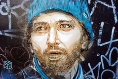 Street art graffiti in Oslo. A graffiti piece in Osterhaus street, Oslo, by French street artist C215. C215, is the moniker of Christian Guémy, a French street Royalty Free Stock Image