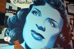 Street art Montreal Alys Robi Stock Image