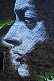 Street art Montreal. MONTREAL CANADA SEPT 2: Street art Montreal  on sept 2 2014 in Montreal Canada. Montreal is the perfect place to walk in the back alleys and Stock Photo
