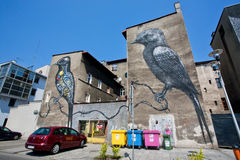 Street art pictures with two colorful birds on the fronts of the modern buildings Stock Images
