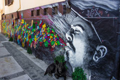Street Art Valparaiso. Street Art shot stray dog Royalty Free Stock Image