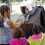 Street artist entertaining children. Royalty Free Stock Photos