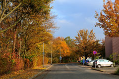 Street in autumn. With car,building and signal showed Stock Image