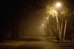 Street in the autumn mist Royalty Free Stock Image