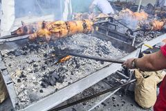 Roasting of young piglets on the grill and fire Stock Photography