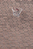 Street basketball and wall. Street Basketball with brick wall Royalty Free Stock Photos