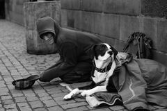 A street beggar earns money on tourists. A street beggar causes a feeling of pity for his pet and earns money on tourists. Czech Republic. Prague. The Charles Royalty Free Stock Images