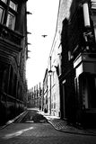 Street in black and white Royalty Free Stock Images