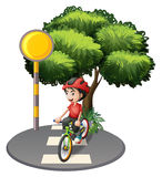 A street with a boy biking Royalty Free Stock Photo