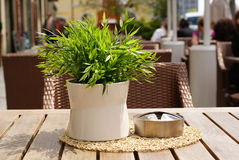 Street Cafe  with  flower on a table. Royalty Free Stock Images