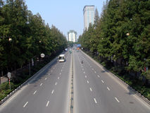 Street in china. The street with green trees in china Royalty Free Stock Images