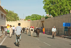 Street in the city of Jodhpur. Rajasthan, India Stock Photography