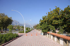 Street of City of Kemer, Turkey Royalty Free Stock Photography