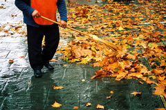 Street cleaner #2. Autumn street cleaner. A city worker steam-cleans the sidewalk royalty free stock photos