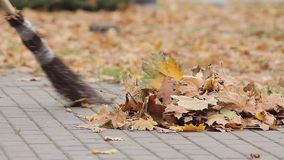 Street cleaner sweeping foliage into pile in autumn park, low-paid occupation. Stock footage stock video footage
