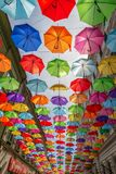 Street with colored umbrellas in Timisoara, Romania Royalty Free Stock Photo