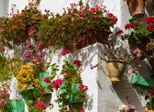 Street of Cordoba royalty free stock photography
