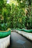 Street corridor wall green fence. Sun shone Stock Image