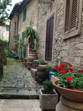 A street in Cortona Stock Photography