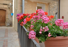 Street decorated with flowers in the pots Royalty Free Stock Images