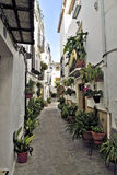 Street decorated with plants. Iznatoraf. Andalusia Royalty Free Stock Photos