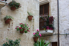 Street decoration in Bari, Italy. A decorated with flowers and plants street in Bari, Italy Stock Photo