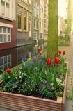 Street of Delft, Holland Royalty Free Stock Image
