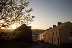 Street in Derry, UK. Tree and houses lit by warm evening light in Derry, Northern Ireland, UK Stock Images