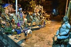 Street Dog Of Kolkata Royalty Free Stock Photos