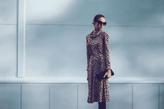 Street fashion concept - pretty elegant woman in leopard dress Royalty Free Stock Photos