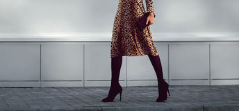 Street fashion concept - stylish elegant woman in leopard dress stock image