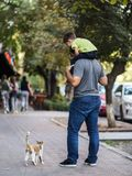 Hello, baby! Father and son play with cute street cat. In the street, father and son play with cute street cat, very warm moment stock photo