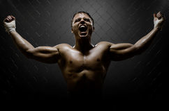 Street fighter. Vertrical photo  muscular young  guy street-fighter,  triumphant cries  yell , hard light Royalty Free Stock Photography