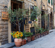 Street of florence. Flowers in the pots on the florence street Stock Photo