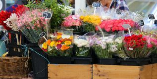 Street florist in South France, colorful fresh flowers in the main street of Cannes. royalty free stock photography