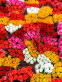 Street flower market. Bunches of bouquets of colored roses for sale royalty free stock photography
