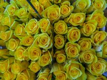 Street flower market. Bunches of bouquets of yellow roses for sale royalty free stock photos