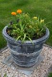 Street flower pot Royalty Free Stock Photography